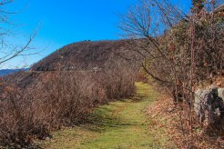 Pathway to Blue Ridge Parkway