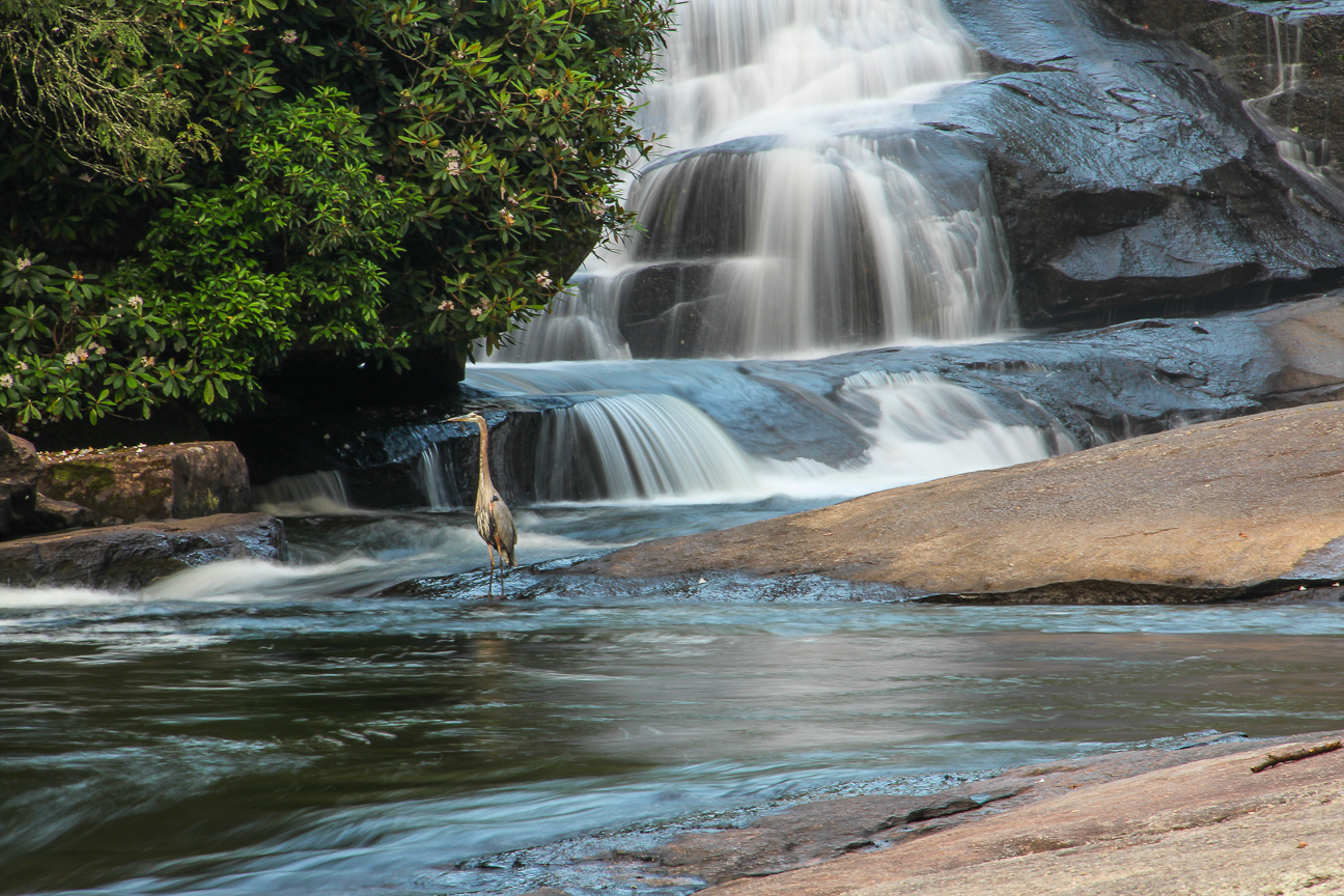 Triple Falls at DuPont State Forest - Photo by Jeff Clark