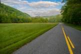 Cataloochee Road
