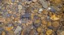 Crystal clear creek water