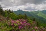 Rocky Knob & Greybeard Mountain