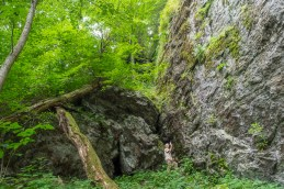 Cave at the falls