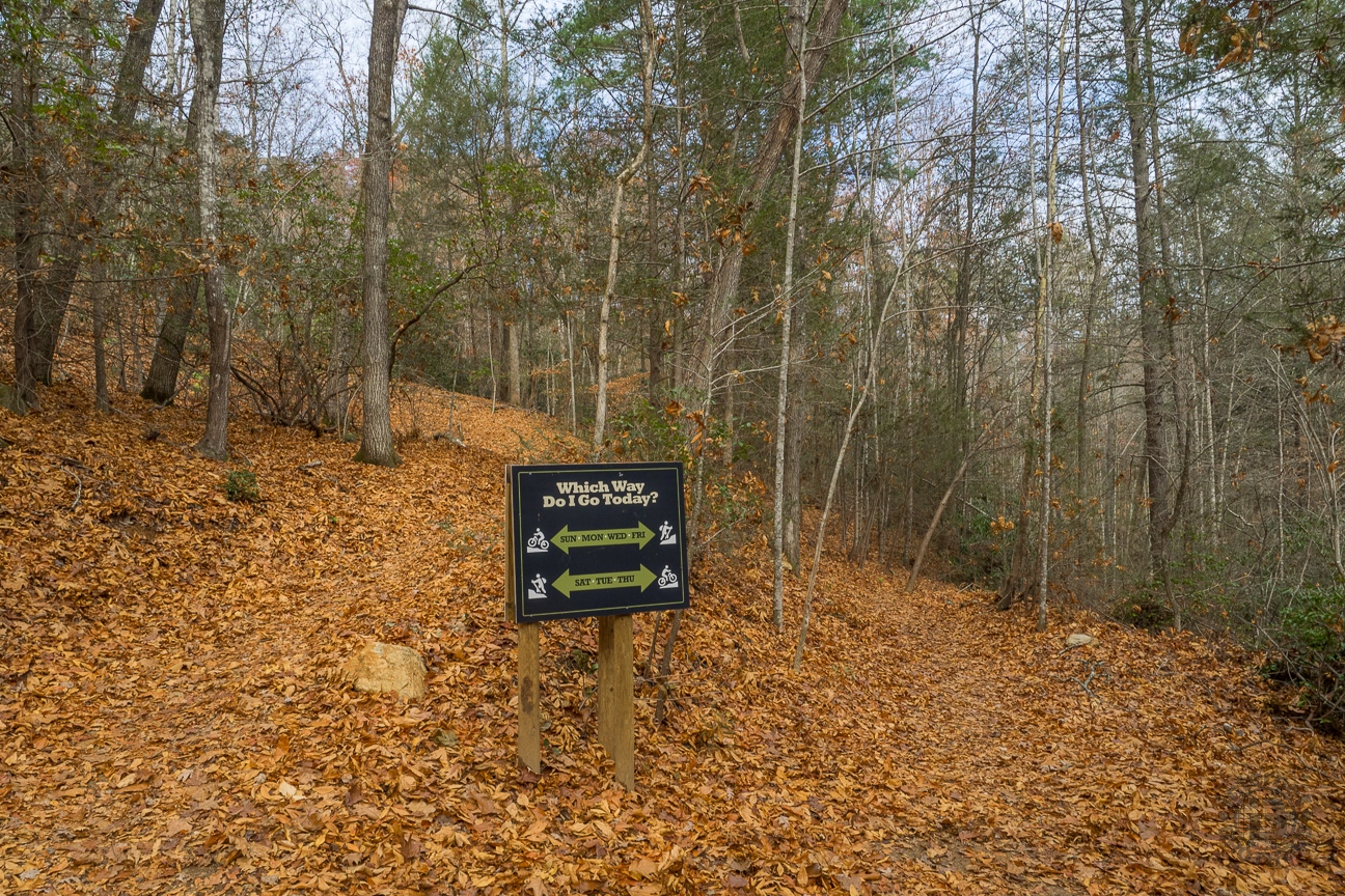 Hikers and mountain bikers always proceed in opposite directions so they can see each other on approach. Alternating days of the week, the direction reverses. This is a thoughtful safety feature of Buffalo Creek Park.