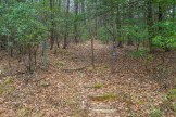 Case Camp Ridge trailhead