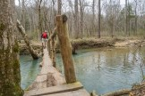 Hurricane Creek footlog