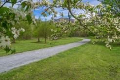 Walking trail in Morse Park