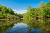 Buffalo River Horseshoe