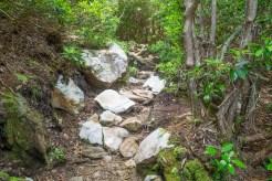 Quartz on the trail