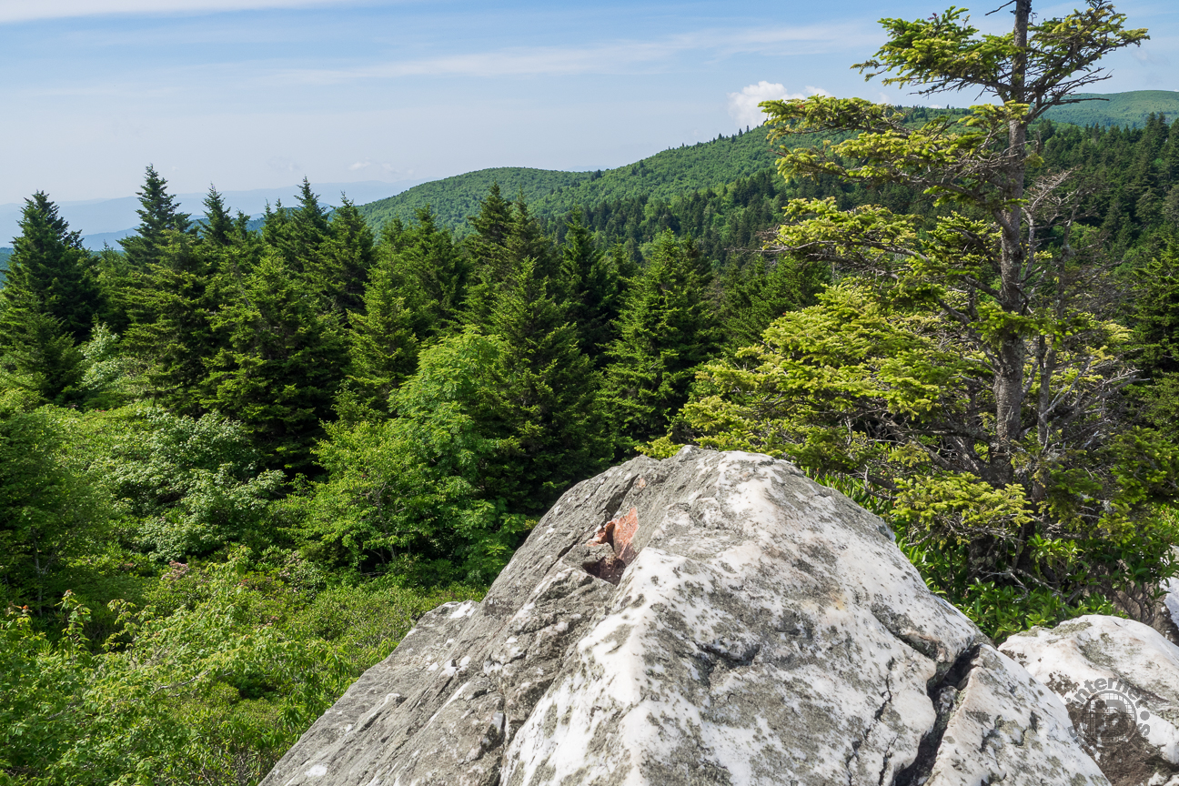 Because of the amazing view of the expanse of Shining Rock Wilderness. This is the view south. You can also see The Narrows ledge off to the west, and in winter you can see Cold Moutain and Mt. Pisgah.
