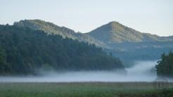 Morning mist lifting