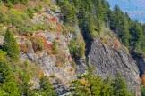 Cliffs of Silvermine Bald