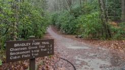 Bradley Fork trailhead