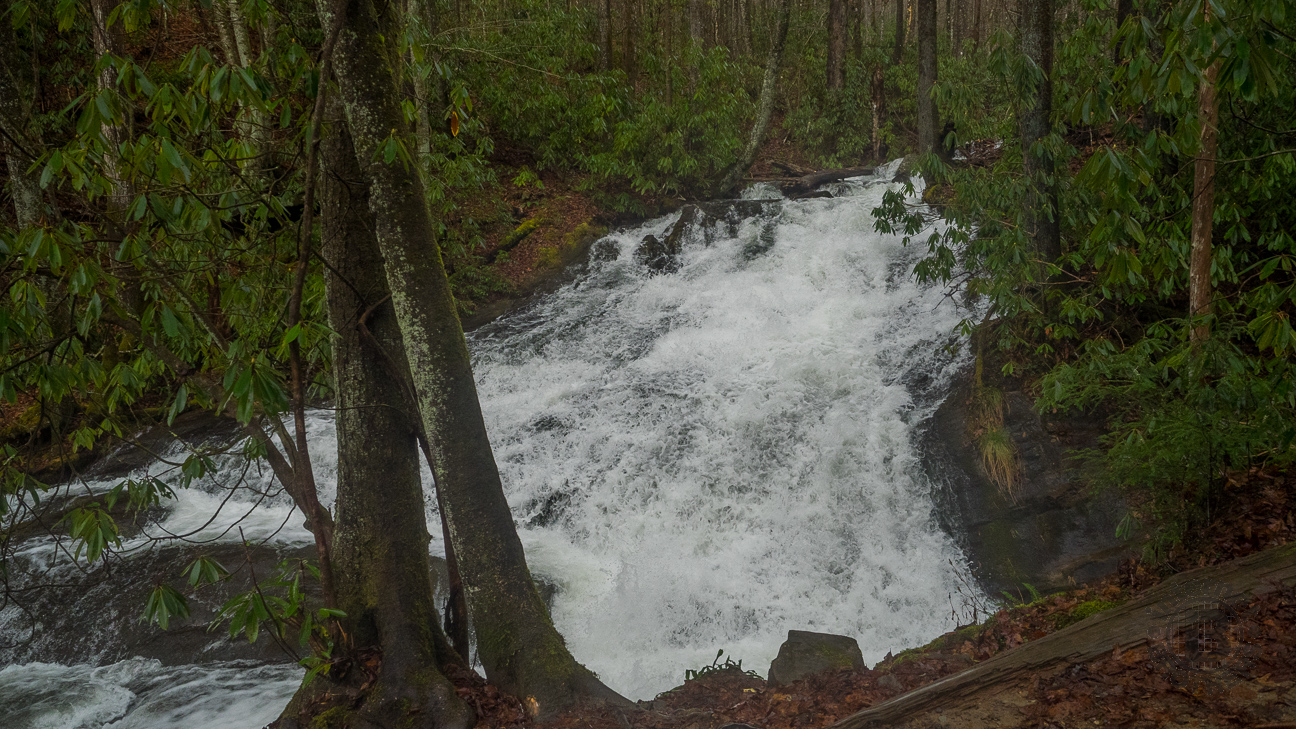 Approximately 30 feet in length, Chasteen Creek Cascade isn't a waterfall. It is a quick moving slide over bedrock as its name implies. As you can see, it was really roaring on this day.