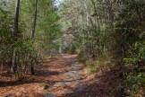 Granite trail surface
