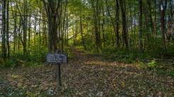 Trailhead on Hwy 441