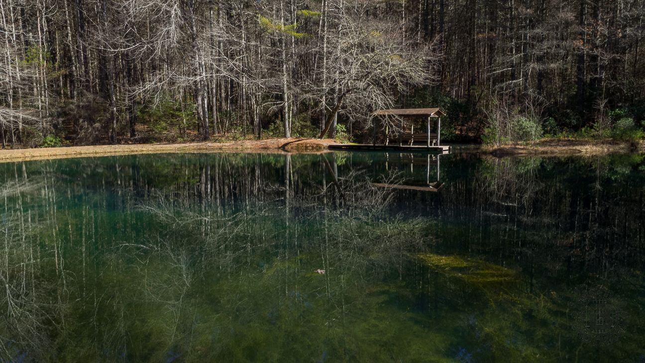 Moss and lichen at the bottom of Lake Alford give the pool its verdant appearance as it reflects the surrounding treeline.