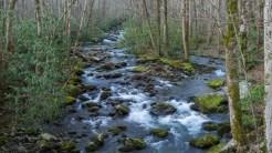 Porters Creek 1