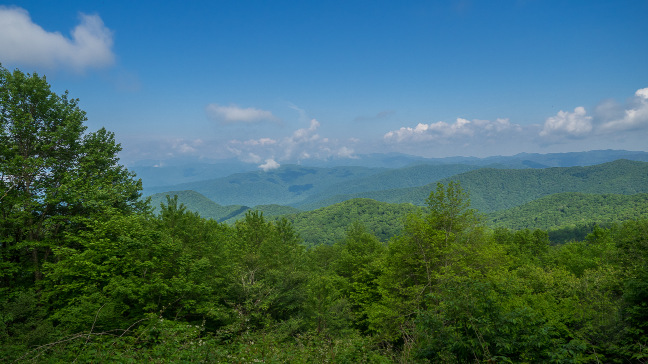 Smoky Mountains Georgia >> Meanderthals | Flat Creek Trail to Heintooga, Great Smoky Mountains National Park
