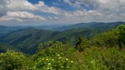 The Narrows & Cold Mountain