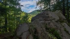 Along Mt. Sterling Road