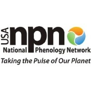 NOAA-supported National Phenology Network data shows plants leafing out 10-20 days earlier than normal