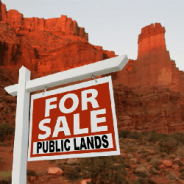 New Mexico has sold 4 million acres of land to oil companies and development