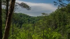 View from Arbutus Ridge