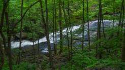 Lower Lynn Camp Falls side view