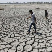 Weathering the violence of climate change