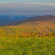Your 1 Million Acres: The Future of the Pisgah-Nantahala National Forest Belongs to You