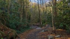 Creek side trail