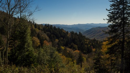 View into North Carolina