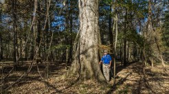 Ken and a giant cypress