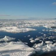 Alaska's Bering Sea Lost a Third of Its Ice in Just 8 Days