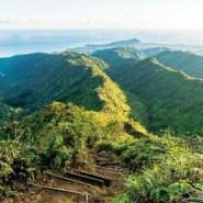 Hiking to the scenic summit of Oahu's Wiliwilinui Ridge Trail