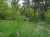 Crossing the dry creek bed