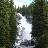 Safety Concerns Lead To Emergency Closure Near Jenny Lake In Grand Teton National Park