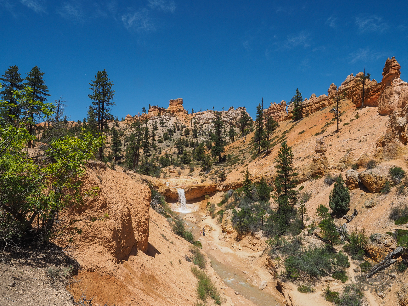 Meanderthals | Mossy Cave Trail, Bryce Canyon National Park