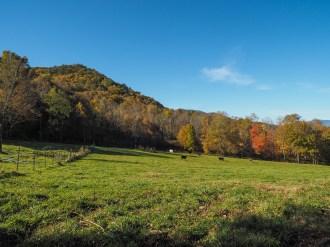 Farm along Scenic Hwy 209