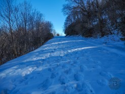 Uphill to Pounding Mill Overlook