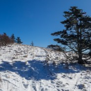 Winter hiking offers a new perspective
