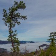 Fall Hiking Series: World's Edge