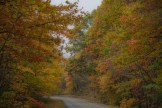This is why you go. Fall color on both sides of the Parkway
