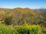 Purchase Knob as seen from Gooseberry Knob at The Swag