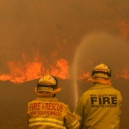 'Monumental' NSW bushfires have burnt 20% of Blue Mountains world heritage area