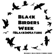 #BlackBirdersWeek takes on systemic racism