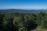 South from Mt. Mitchell summit