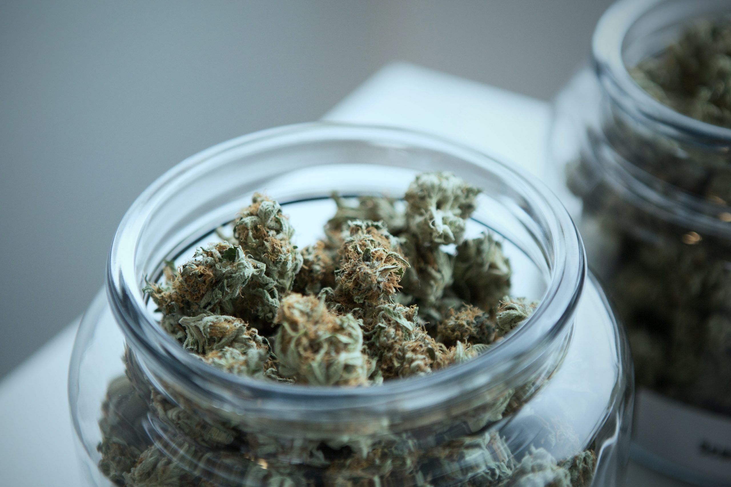 medicinal-cannabis-cryptocurrency-blockchain-m2bio-Willem-Jonker
