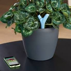 Flower Power Parrot cuida tus plantas