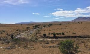 Fluss in der Serentgeti